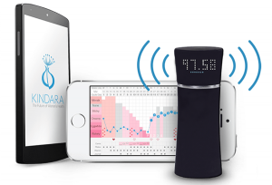 Wink basal thermometer